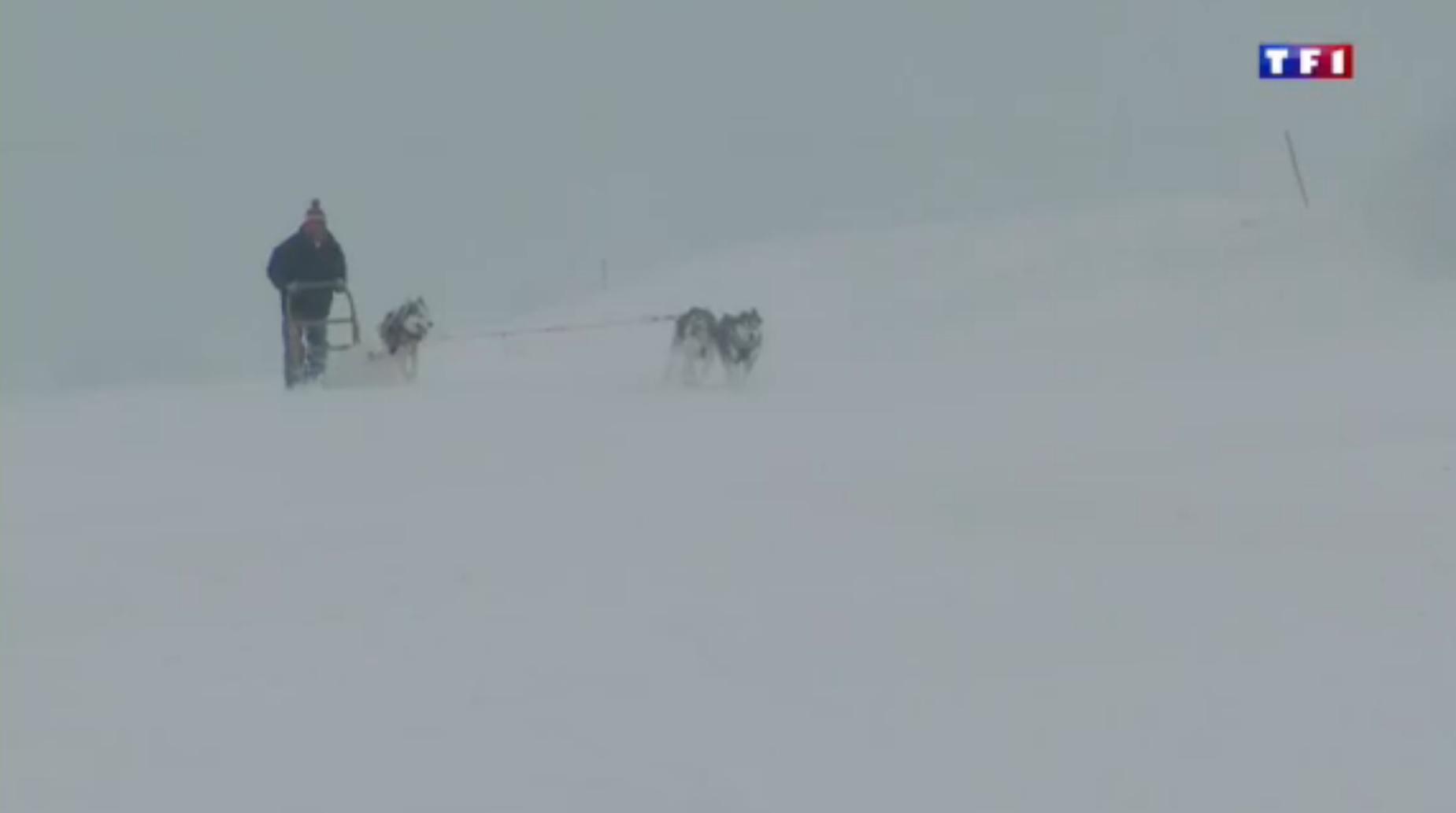 TF1 Jura (3-5) les mordus de ski de fond  35