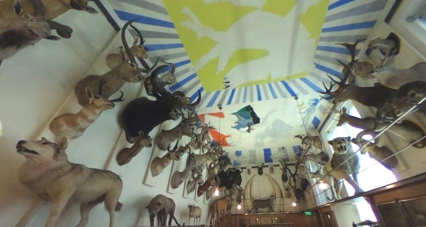 Musee de la Chasse et de la Nature