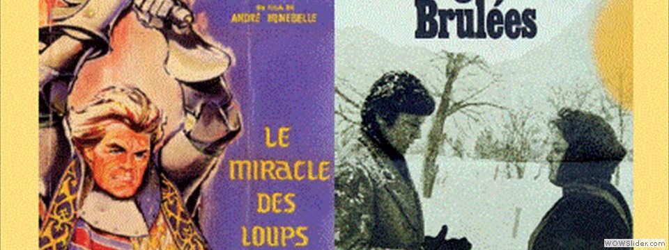 293 2012 couverture